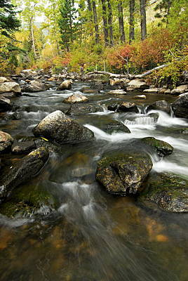 Autumn Photograph - Crazy Woman Creek In Autumn by Larry Ricker