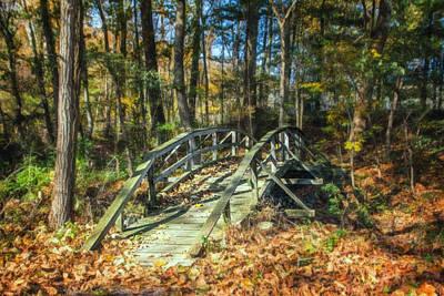Stream Photograph - Creek Crossing by Tom Mc Nemar