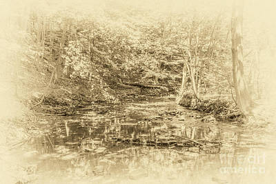 Webster Ny Photograph - Creekside by William Norton