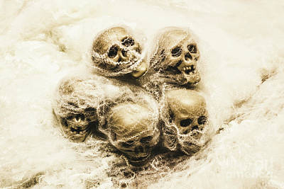 Human Skeleton Photograph - Creepy Skulls Covered In Spiderwebs by Jorgo Photography - Wall Art Gallery