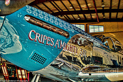 Cripes Almighty Print by Tommy Anderson