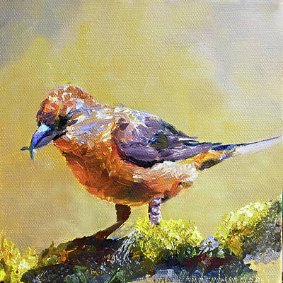 Crossbill Painting - Crossbill by Jan Hardenburger