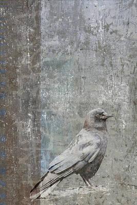 Corvid Digital Art - Crow In Grey Flannel by Carol Leigh