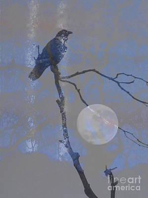 Crow Perched Print by Robert Ball