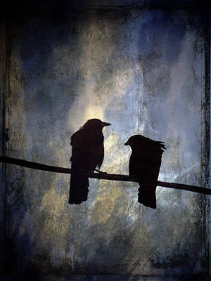 Crow Photograph - Crows And Sky by Carol Leigh