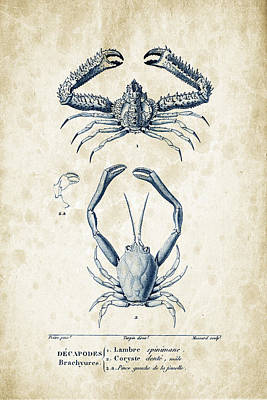 Crustaceans - 1825 - 01 Print by Aged Pixel