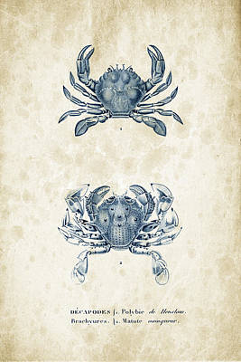 Crustaceans - 1825 - 05 Print by Aged Pixel