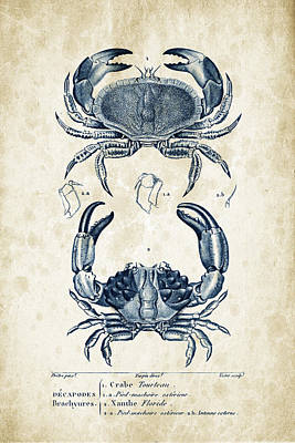 Crustaceans - 1825 - 06 Print by Aged Pixel