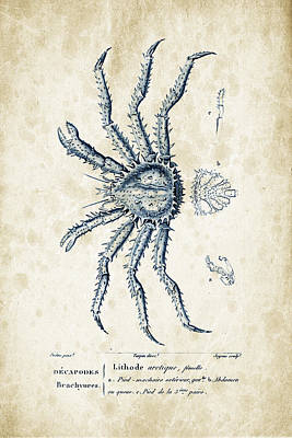 Crustaceans - 1825 - 23 Print by Aged Pixel