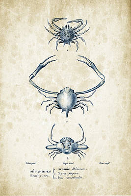 Crustaceans - 1825 - 26 Print by Aged Pixel