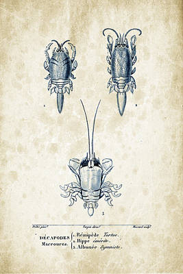 Crustaceans - 1825 - 27 Print by Aged Pixel