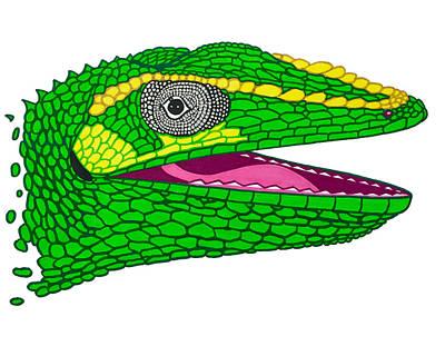 Python Drawing - Cuban Knight Anole by Joe Richichi