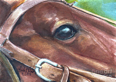 Horse Eye Painting - Cueca by Linda L Martin