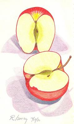 Rod Ismay Drawing - Cut Apple by Rod Ismay