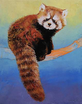 Cute Red Panda Print by Michael Creese