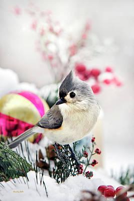 Titmouse Photograph - Cute Winter Bird - Tufted Titmouse by Christina Rollo