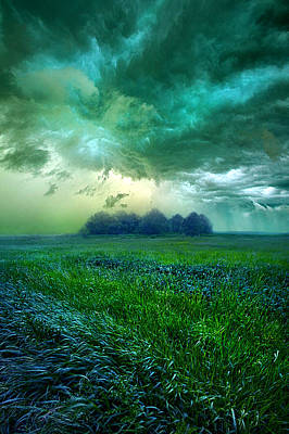 Country Living Photograph - Cutting Loose by Phil Koch