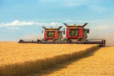 Cutting Wheat Print by Todd Klassy