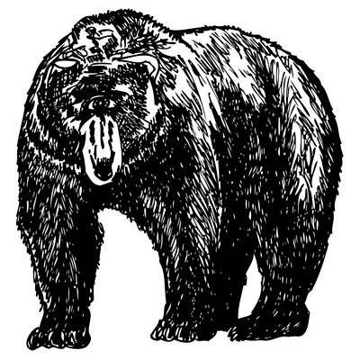 Cyclops Drawing - Cyclops Bear by Karl Addison