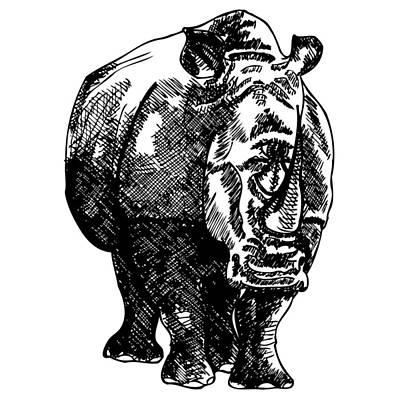 Cyclops Drawing - Cyclops Rhino by Karl Addison