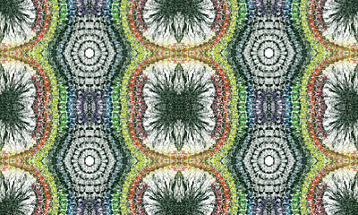 Cymatics Geometry #1546 Print by Rainbow Artist Orlando L aka Kevin Orlando Lau