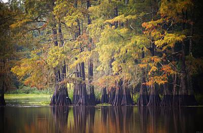 Cypress Stump Photograph - Cypress At Old River by Susan Bordelon