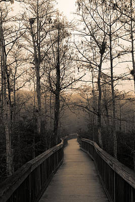 Cypress Boardwalk Print by Gary Dean Mercer Clark