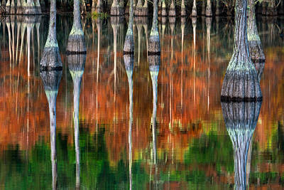 Fall Photograph - Cypress Reflections II by Chris Moore