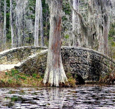 Cypress Swamp Photograph - Cypress Swamp Stone Bridge by Elena Tudor