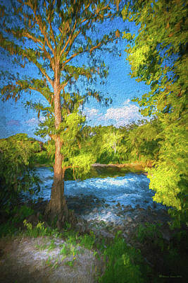 Cypress Tree By The River Print by Marvin Spates