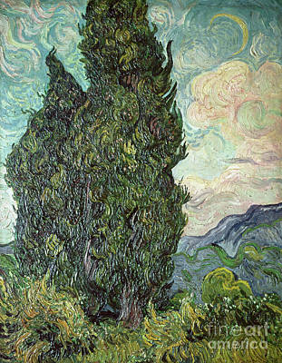 Cypresses Print by Vincent Van Gogh