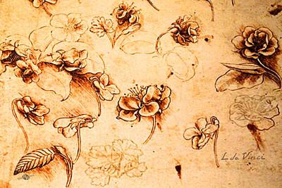 Da Vinci Flower Study Gold By Da Vinci Print by Tony Rubino
