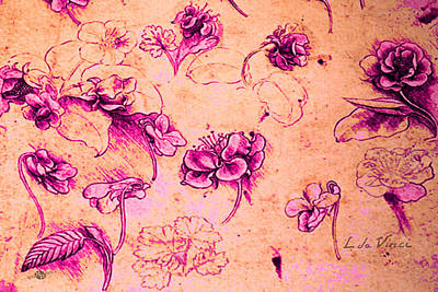 Da Vinci Flower Study Pink And Orange By Da Vinci Print by Tony Rubino