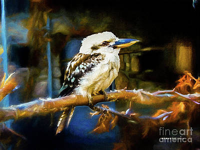 Kingfisher Mixed Media - Dacelo Novaeguineae Kookaburra by Mona Stut