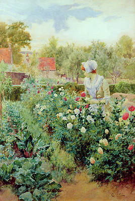 Pruning Painting - Dahlias by Alfred Glendening
