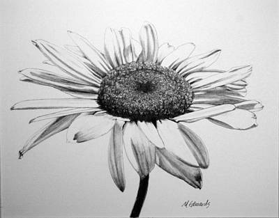 Thinking Of You Drawing - Daisy II by Marna Edwards Flavell