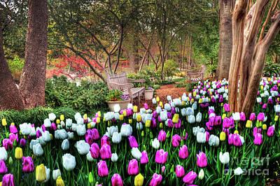 Dallas Arboretum Print by Tamyra Ayles