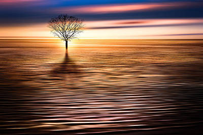 Damian Photograph - Damian Trevor - Beautiful River Nature Landscape by Damian Trevor