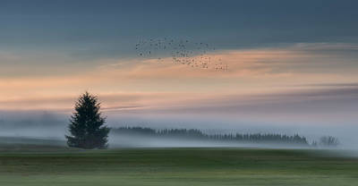 Fog Mist Photograph - Dance In The Clouds by Shenshen Dou