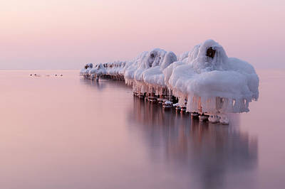 Dance Of White Swans Print by Dmitry Kulagin