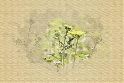 Candid Mixed Media - Dandelion. by Irina Chernysheva