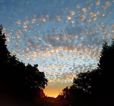 Dappled Sky Print by The Rambler