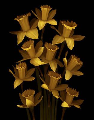 Dark Daffodils Print by Marsha Tudor