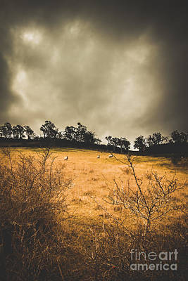 Pasture Scenes Photograph - Dark Overcast Prairie by Jorgo Photography - Wall Art Gallery