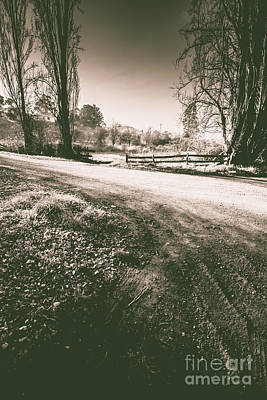 Old Country Roads Photograph - Dark Woods Way by Jorgo Photography - Wall Art Gallery