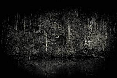 Virginia Photograph - Darken Woods by Shane Holsclaw