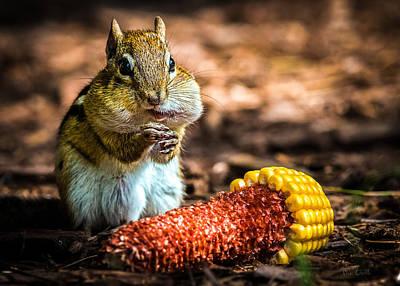 Darn Good Corn Print by Bob Orsillo