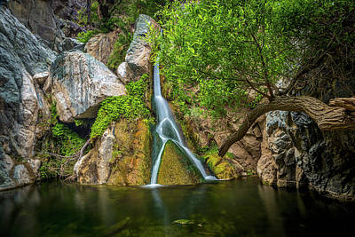 Darwin Falls Death Valley 2 Print by Peter Tellone