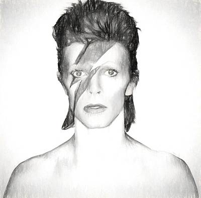 Spider Drawing - David Bowie Charcoal  by Dan Sproul