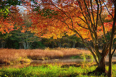 Dawn Lighting Rhode Island Fall Colors Print by Jeff Folger